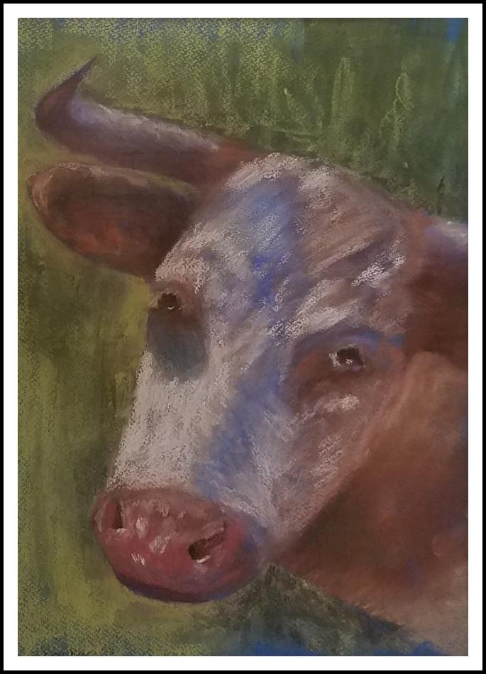 """Longhorn"" by Betsy Barker"