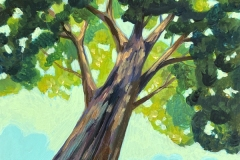 """Canopy View II"" - Acrylic by Lisa Shimko - $75"