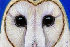 """""""Dream Gaze - Barn Owl Blue"""" - Acrylic by Lisa Shimko - $75"""