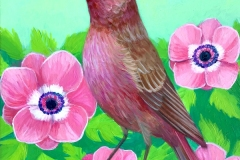 """""""Rose Finch Flowers"""" - Acrylic by Lisa Shimko - $100"""