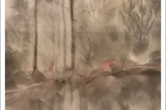 """Morning Rays"" by JoAnn Cadmus"