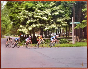 Bike Race PHOTO Jim Bandy