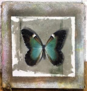 aldo muzzarelli captive butterfly acrylic