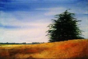 dragon pine (2)