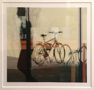 Ali Van Den Broek Transparency Photography  $200