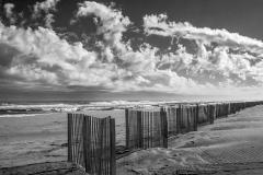 """Beach Fences"", Brenda Hill"