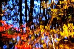 """""""Walking with Monet"""", Jim Matthews"""