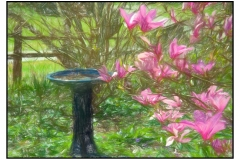 """""""Spring in the Countryside"""" by Diane DeMont ~ Photography ~ $225"""