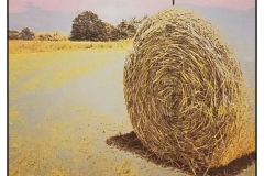 """""""Haystack Harvest"""" by Carolyn Gibson ~ Photography ~ $125"""