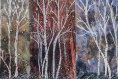 """Sue Chamberlaine - """"Keowee Birch"""""""
